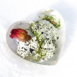 Coeur rose sauvage