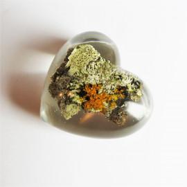 Petit coeur Lichen