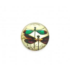 Cabochon verre - Libellules - 20 mm