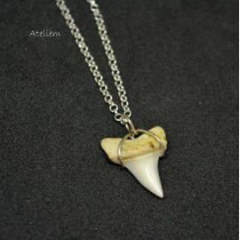 Pendentif - Dent de requin sur fil d'argent