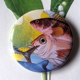 Badge rond poissons aux gros yeux