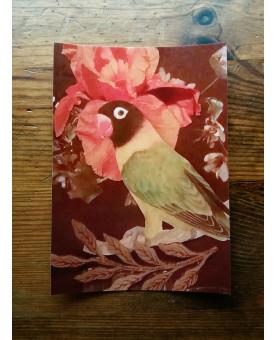Carte postale de l'oiseau vert