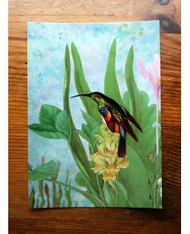 Carte postale Glawdis