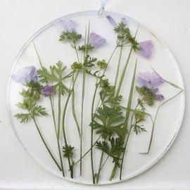 Cadre botanique Mauve
