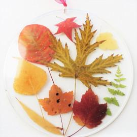 Cadre botanique Feuilles d'automne