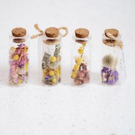 Fioles de fleurs séchées