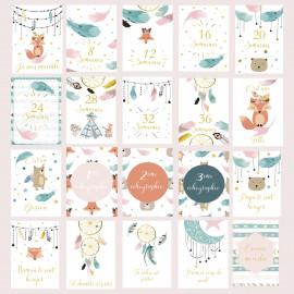 Carte étape grossesse en français, cartes mois par mois grossesse, 20 cartes papier photo finition glacé