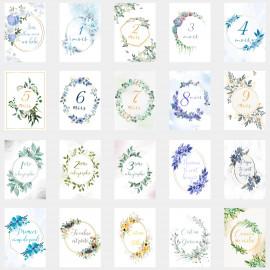 Carte étape grossesse et naissance lot de 20 cartes évolution grossesse papier photo